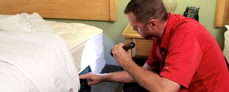 Truly Nolen Tech inspecting bed for bed bug infestation