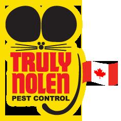 Pest control port elgin