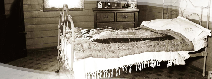 The Surprising History of Bed Bugs