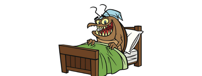 Bed Bug in the Bed