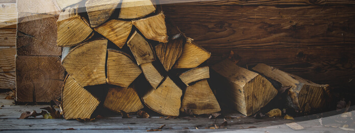 Are Pests Hiding in Your Firewood
