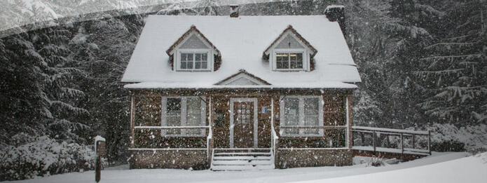Pest Proofing Your Home This Winter
