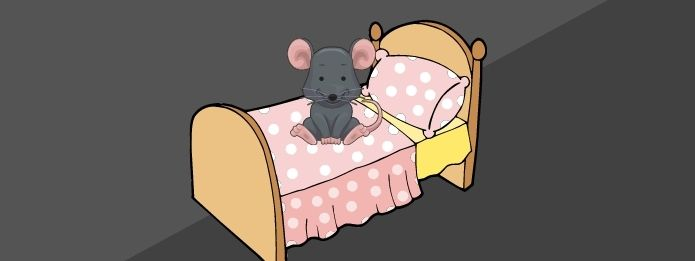 How To Keep Mice Out of Your Bed
