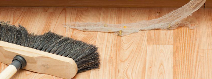 Simple and Safe Tips To Rid Your Home of Spiders This Spring