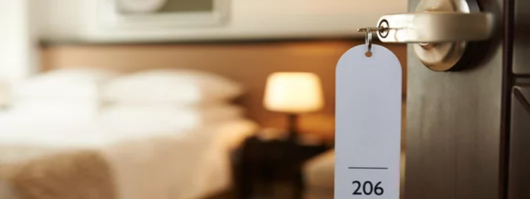 How Do Hotels Handle Bed Bugs
